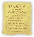 The Secret to Surviving Nursing School