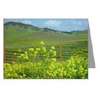 napa valley photography greeting cards