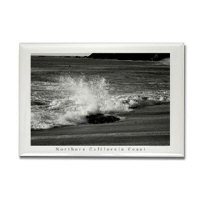 GIFTS - Black + white California Coastal Magnets