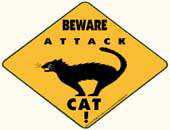 Attack Cat | Trendy T-Shirts & Gifts