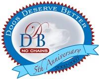 5th Anniversary DDB Logo