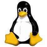 linux / tux