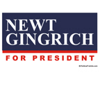 Newt Gingrich for President