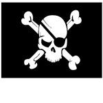 Skull Flag in Black and White