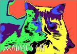 Matisse's Cat