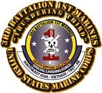 USMC - 3rd Battalion - 1st Marines w Txt