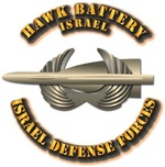 Hawk Battery