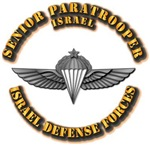 Israel - Senior Paratrooper Wings