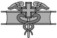 <P>National Guard Expert Field Medical Badge