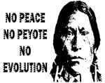NO PEACE ...NO EVOLUTION
