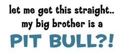 Big Brother?