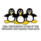 Burning Stare Penguins