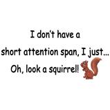 Attention Span Squirrel