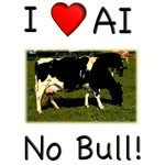 I Love AI No Bull