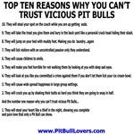 Vicious Pit Bull Top Ten T-Shirts