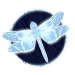 Crystal Blue Dragonfly