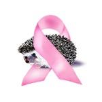 Pink Ribbon **NEW**