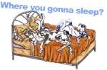 NCH Where you gonna sleep