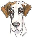 NFQ Pup