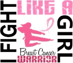 Fight Like A Girl Breast Cancer Warrior