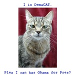 I Can Has Obama?