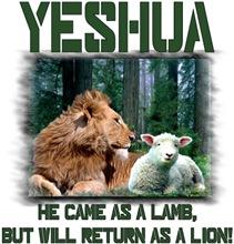 Messianic t-shirts & gifts