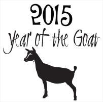 Year of  the Goat Nigerian Dwarf