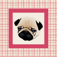 Sweet Pug Puppy Face on Pink Plaid