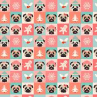 Sweet Christmas Pugs