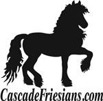 Cascade Friesians