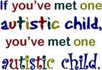 One Autistic Child