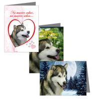 Malamute Greeting Cards
