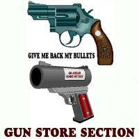 GUN STORE SECTION