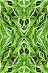 Woven Leaf Abstract 3