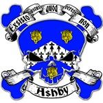 Ashby Family Crest Skull