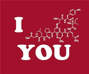 Oxytocin I Love You