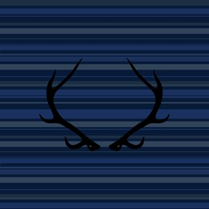 Blue Stripes And Antlers