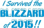 I Survived The Blizzard Of 2015