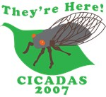 They're Here Cicadas 2007 T-shirts