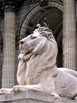 NY Public Library Lions: Fortitude