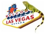 Las Vegas Iguana