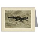 Aviation Blank Cards