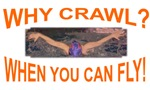 Why Crawl when you can fly