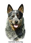 Australian Cattle Dog 9F061D-03
