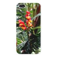 Tropical iPhone 5 Cases