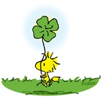 Woodstock Shamrock