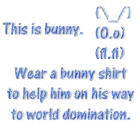 Wear a bunny shirt