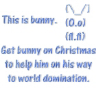 Get bunny on Christmas