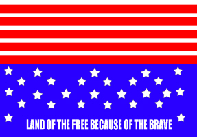 POLITICS/GOVERNMENT-FLAG-LAND OF THE FREE BECAUSE