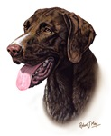 German Pointer